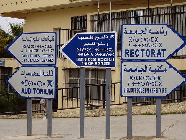 Tamazight: transcription tifinaghe, arabe ou latine ? Seule l'AALA habilitée à