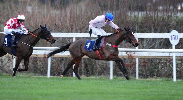 Equine Flu: Equine Influenza: Horse Racing Cancelled Across Britain