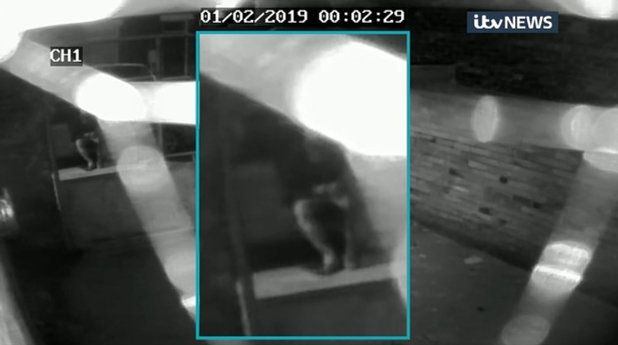 Libby Squire: CCTV Emerges Of Car Minutes After Last Sighting Of Missing Hull
