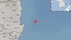 포항 인근 바다에서 규모 4.1 지진이
