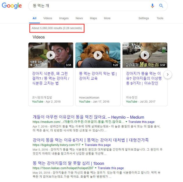 19년 2월 11일 현재 구글 '똥 먹는 개' 검색 결과 화면