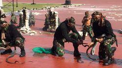 Aνάκριση με φίδι(!) από την αστυνομία της Ινδονησίας - Επίσημη