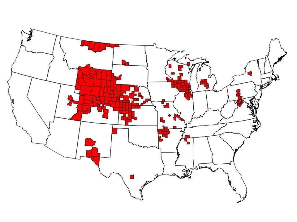 Chronic waste disease worse in Kansas deer