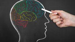 脳幹に局在して体重減少を調節する受容体