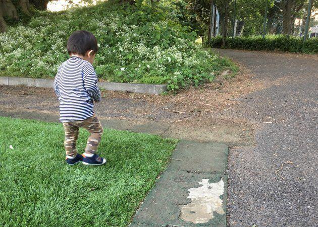 こどもは1歳5カ月。歩けるようになり、目が離せなくなってきた。