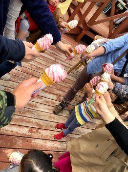 地元産ルバーブのアイスクリーム