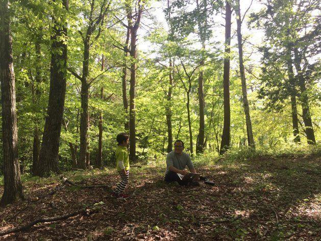 森のオフィス側の森の中