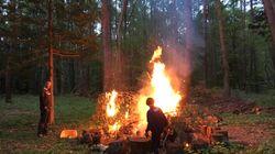 森の中でリモートワークしたら「憑き物が落ちた」