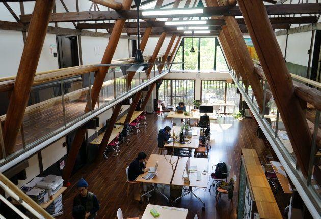 自然光が降り注ぐ森のオフィス。天井が高い。