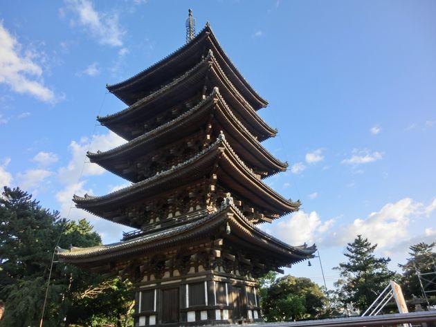 そうか、庭に違いがあったのか。日本とアメリカで育った自分のアイデンティティを「建築」から考え直した