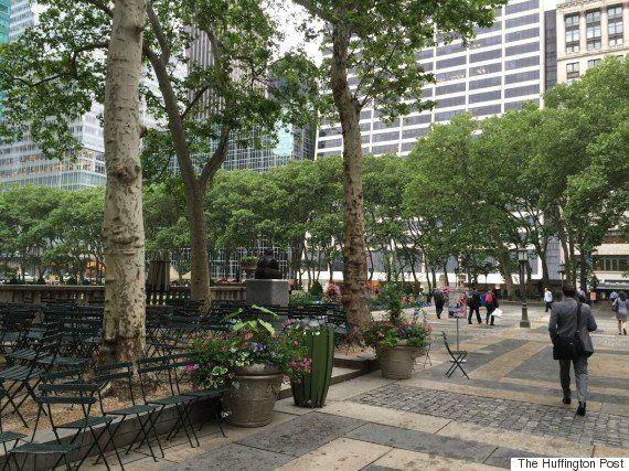 「シャイな人ほど、外国に出て欲しい」リーマンショックでリストラされ、今はニューヨークで公園を造る島田智里さんの言葉