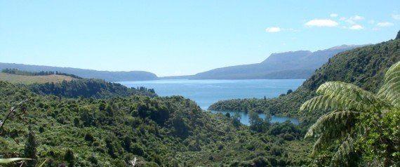 四角大輔インタビュー:自然エネルギー率79%、原発のない未来の国ニュージーランドに学ぶ【争点:エネルギー】