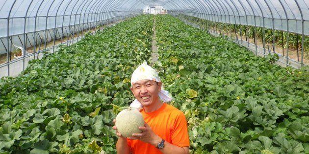 メロン6600玉が全滅した農家に、クラウドファンディングで1600万円が集まった「世界がガラッと変わった」