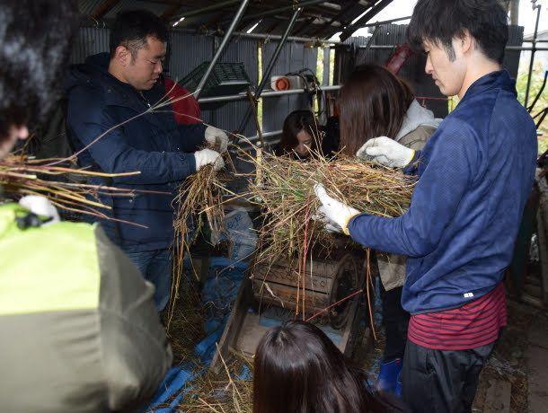 サイボウズ式:「社員旅行」以上、「社員研修」未満の農作業キャンプをしたら、参加者が勝手にチームワークを発揮してくれた話