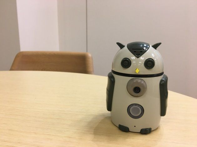 ハタプロが今春発売予定の商用向け小型ロボットZUKKU。今年中には家庭用も発売予定だ