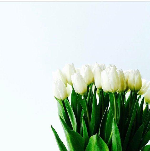 ひとの死を、受け容れる。あるいは希釈する。佐倉さんのインスタは、きれいな花と食事であふれている。