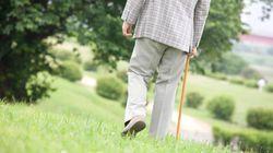 自ら備える長生きリスク:研究員の眼