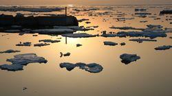 知床で流氷を見ながらテレワークしてみた。ウニと音楽が堪能できるカフェバー「GVO」