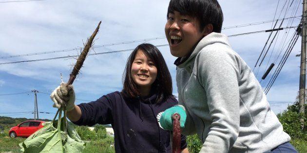 農業分野の学生起業は難しい?食・農業分野で起業準備中の大学4年の私が感じる3つのこと。