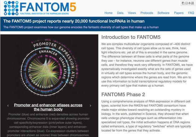 図1:FANTOM5のホームページ