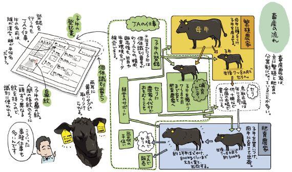 「鳥取和牛」を全国に~全国農団労 鳥取中央農協労働組合~