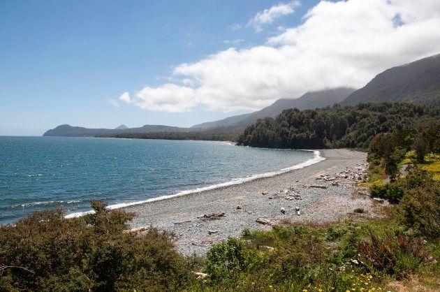 森と海が出会うビーチ