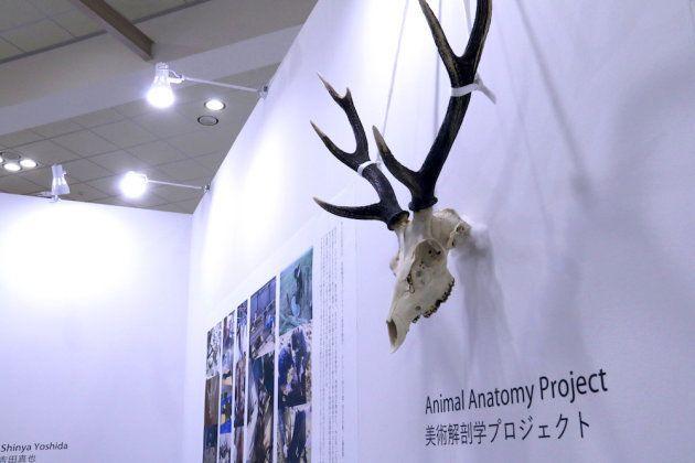 秋田公立美術大学のブース