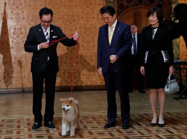 「ザギトワさんちの子になります」秋田犬マサルが週刊朝日の表紙に