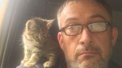 ゴミ処分場に捨てられた子猫、命を救ったのはトラック運転手だった。