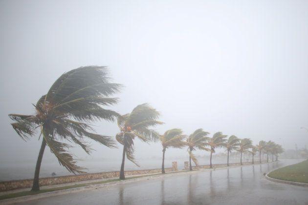 ハリケーン・イルマが近づくキューバ(9月8日)