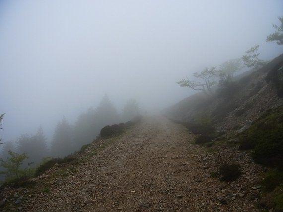 フランスからスペインへ、国境とピレネーを越えて僕らは巡礼路を歩き続けた。
