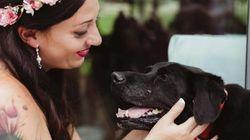 15年間一緒だった犬、死の間際に主人の花嫁姿を見届ける。【画像】
