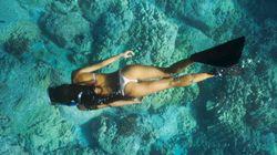 世界のベスト・ダイビング・スポット15 夢のような海中散歩(画像集)