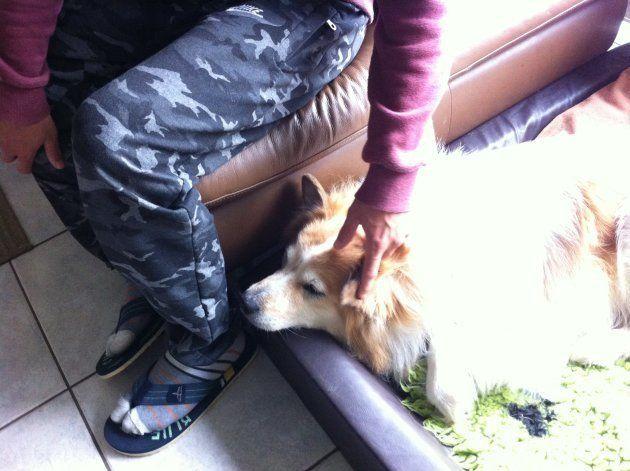 ドイツ人夫婦の里子になった難民少年のラマットは動物が大好き。