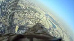 世界一の超高層ビルからワシがヒュヒューン(動画)
