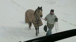 雪で立ち往生、食料を届けに来たのは馬に乗った18歳の女性だった
