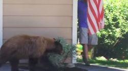 クマと男が出会い頭にワッ!