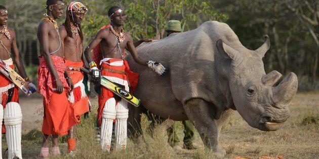 保護活動に協力したマサイ族のクリケット選手らと並ぶスーダン(2017年6月撮影)