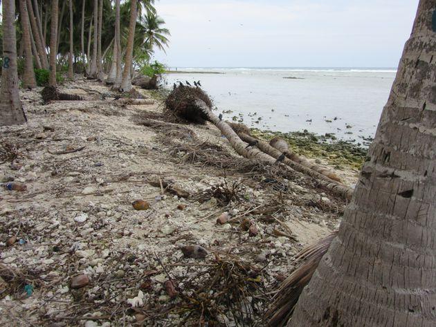 ごみの仮置き場のすぐ脇では海岸浸食が