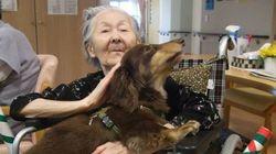 「飼い主が亡くなっても一生面倒をみます」ペットと入居できる、特別養護老人ホーム