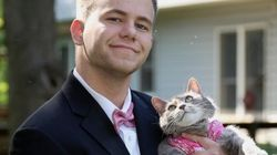 男子高生、女の子誘えなくてプロムに猫を連れて行く→人気爆発(画像)