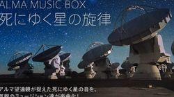 星のデータを音楽に...豪華アーティストによる前代未聞のCD制作プロジェクトに参加、音楽家・蓮沼執太さんインタビュー