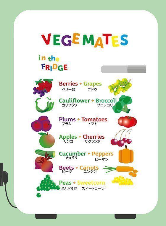 「リンゴとスイカは一緒に保存してはダメ」...野菜とフルーツ、長持ちする組み合わせは?(一覧)