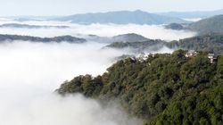 雲海に包まれる「天空の天守」