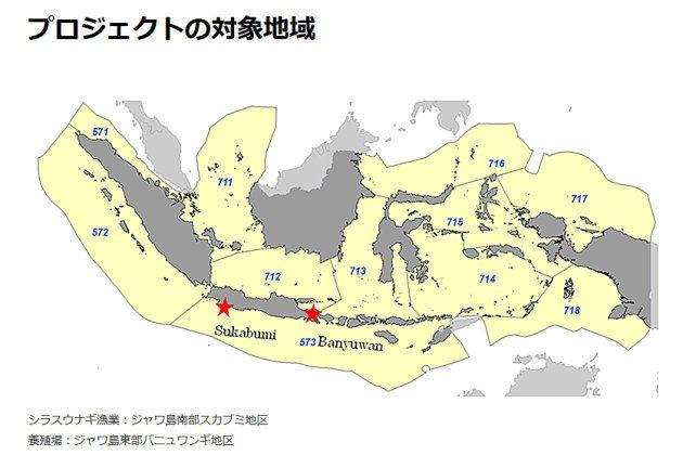 インドネシア・ジャワ島 ウナギ保全プロジェクト