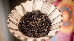 コーヒーは、豆を冷凍すると美味しくなるらしい。なぜ?(研究結果)