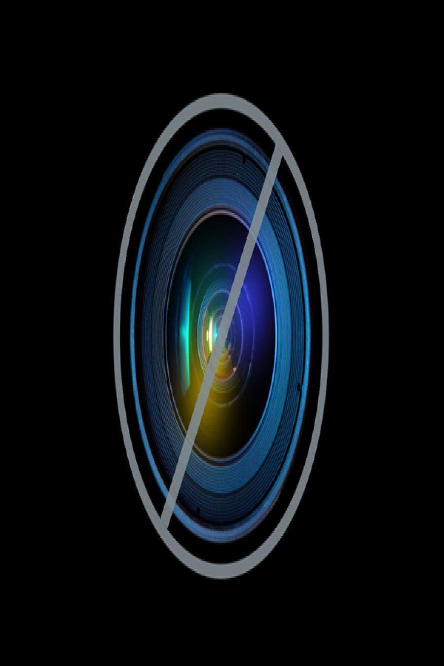 【海中写真コンテスト】アザラシが泳ぐコンブの森など受賞作品【ギャラリー】