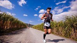 1月~4月に沖縄で開催されるマラソン&ウォーキング大会まとめ
