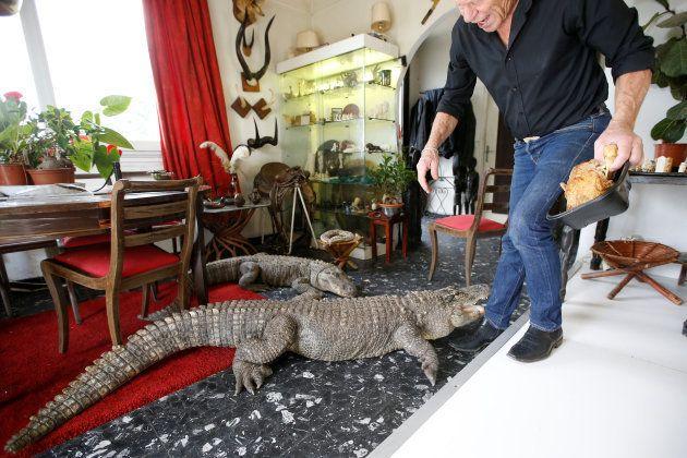 フランスに、400匹以上の爬虫類と暮らす男性がいる