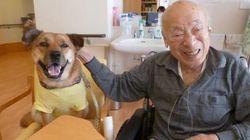 ペットと暮らせる老人ホームでの音楽療法